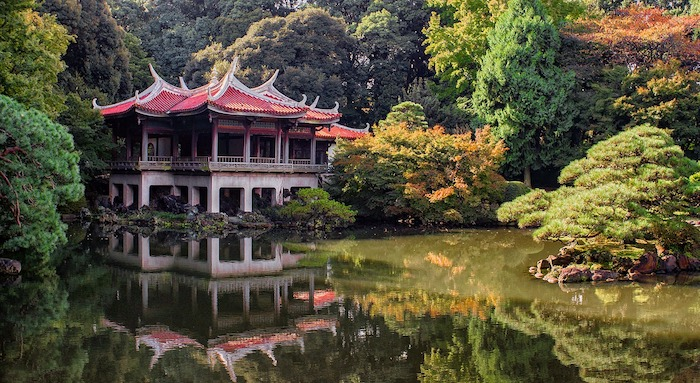 tokyo autumn